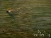 Земеделска мафия усвоява милиони от ЕС